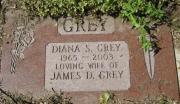 Grey M CA1 R5 L6