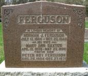 Ferguson M2 R10 P21 LA,B,C,D