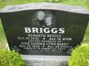 Briggs M3N R6 L338,339
