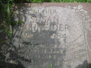 Schneider M3N R2 L40