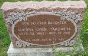 Tarzwell M3N R2 L22