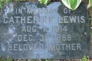 Lewis M CA1 R4 L2