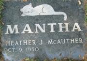 Mantha M CA1 R5 L12