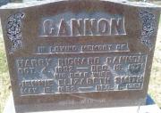 Cannon M2 R2 P153 LA,B