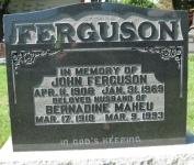 Ferguson M2 R3 P139 LC,D