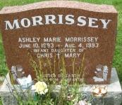 Morrissey M3N R5 L21,22