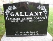 Gallant M3S R8 L397